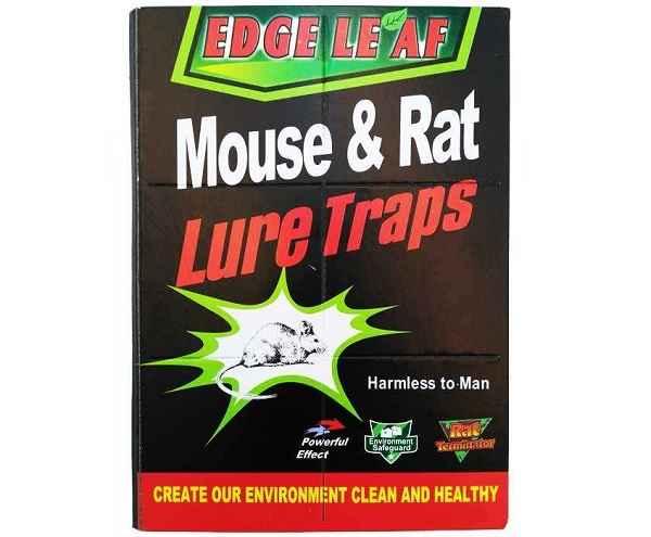چسب موش کتابی با کیفیت بسته 12 عددی