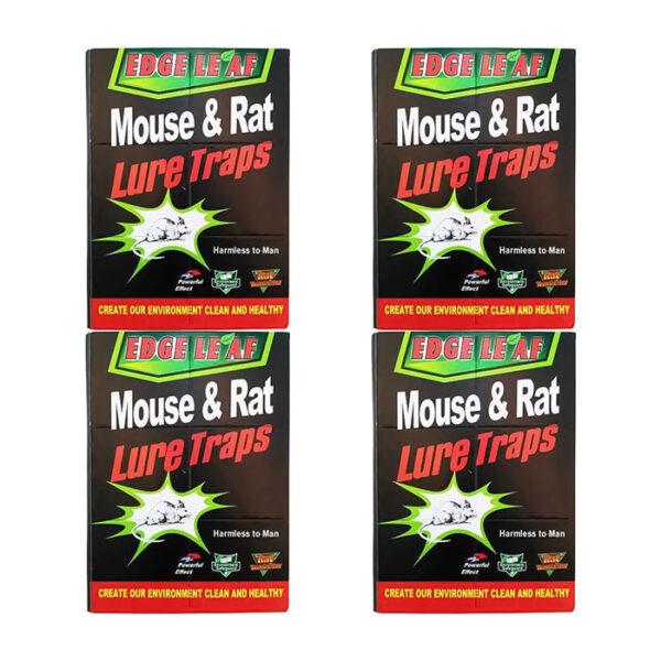 چسب موش کتابی بسته 100 عددی (کارتنی)